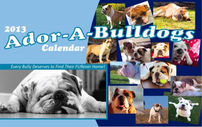 Click here for information on how to purchase the 2013 Ador-A-Bulldog Calendar